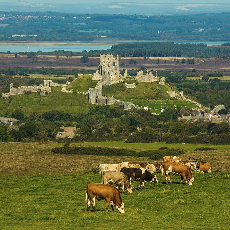 Corfe Castle, Purbeck, Dorset